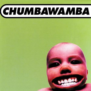 Tubthumping by Chumbawama is a 1997 one-hit wonder